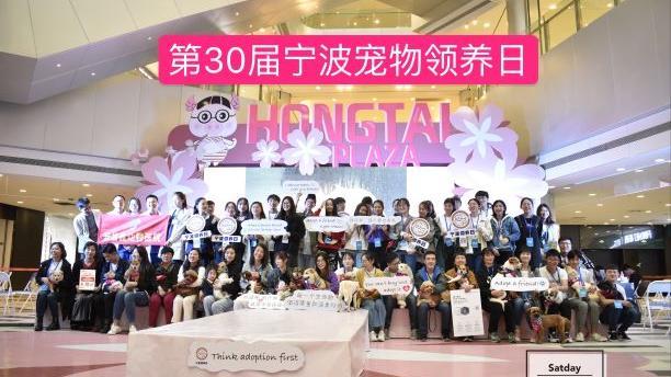 宁波领养日义卖活动